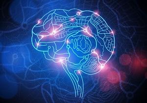 Understanding the Brain-Behavior Connection